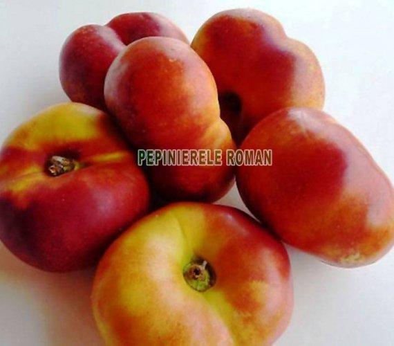 nectarin-nectarin-fruct-plat.jpg